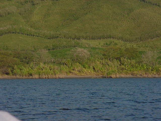 lago5.jpg